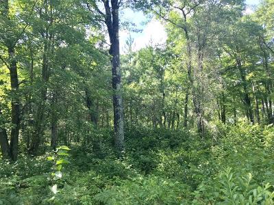 Crivitz Residential Lots & Land For Sale: Lt 4 Peshtigo River Ln
