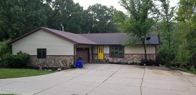 Racine County Single Family Home For Sale: 33825 Lynn Ln