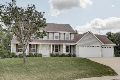 Oak Creek Single Family Home Active Contingent With Offer: 9732 S Scenic Ct