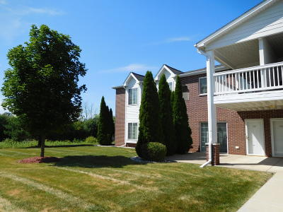 Racine County Condo/Townhouse For Sale: 838 Boulder Trl #202