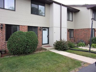 Racine County Condo/Townhouse For Sale: 1401 Oakes Rd #9