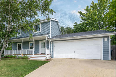 Racine County Single Family Home For Sale: 8524 Westminster Dr