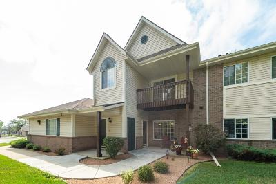 Racine Condo/Townhouse Active Contingent With Offer: 6936 Dale Dr #4