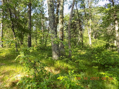 Pound Residential Lots & Land For Sale: Lt8 Crimson Ln