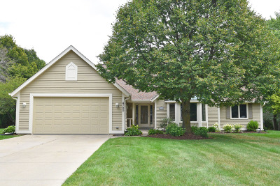 Brookfield Single Family Home For Sale: 4780 Three Meadows Dr