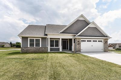 Racine County Single Family Home For Sale: 6535 Dove Cir