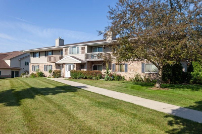 Ozaukee County Condo/Townhouse For Sale: 2043 Pine Ridge Ct #F