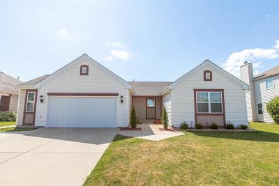 Kenosha Single Family Home For Sale: 6430 92nd Ave
