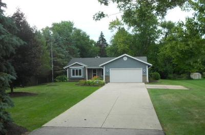 Racine County Single Family Home For Sale: 7449 Old Spring St