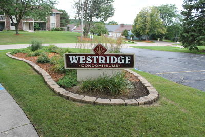 Washington County Condo/Townhouse For Sale: 645 Westridge Dr #10