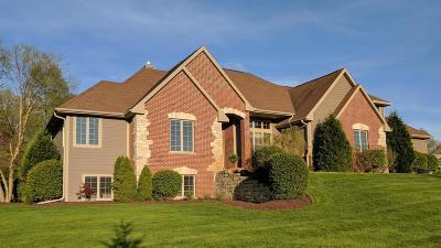 Lake Geneva Single Family Home For Sale: 2921 Moelter Dr