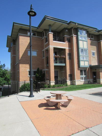 Waukesha County Condo/Townhouse For Sale: 15295 W Library Ln #103