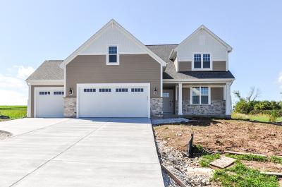 Racine County Single Family Home For Sale: 30920 Morning View Cir