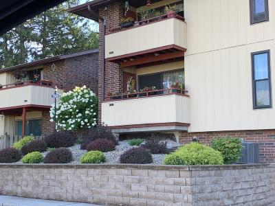 Milwaukee County Condo/Townhouse For Sale: 7941 S 68th Street #403