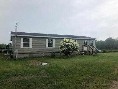 Menominee Single Family Home For Sale: N3101 N-3 Dr