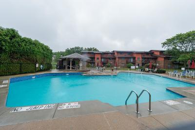 Greenfield Condo/Townhouse Active Contingent With Offer: 8515 W Waterford Ave #3