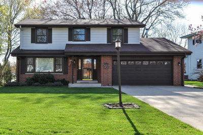 South Milwaukee Single Family Home For Sale: 2901 17th Ave
