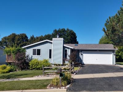 West Bend Single Family Home For Sale: 826 Squire Ln