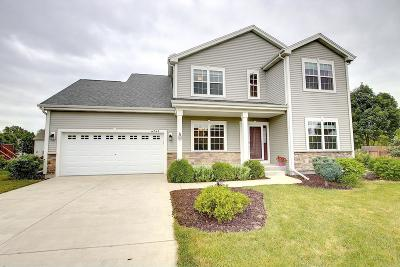 Franklin Single Family Home For Sale: 6941 W Southview Dr