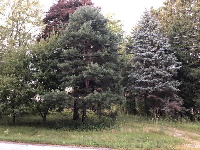Pewaukee Residential Lots & Land For Sale: N28w24376 Watertown Rd