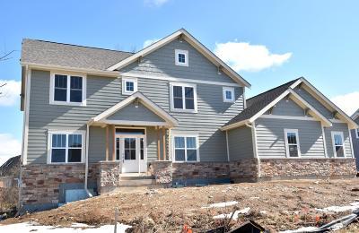 Menomonee Falls Single Family Home For Sale: N194w5726 Deer Park Ct