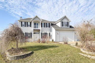 Racine Single Family Home For Sale: 6630 Charles St