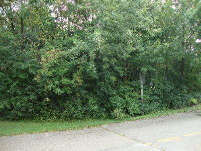Brookfield Residential Lots & Land For Sale: 17550 W Greenfield