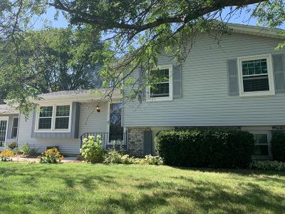 Racine Single Family Home For Sale: 4506 Scout Tr