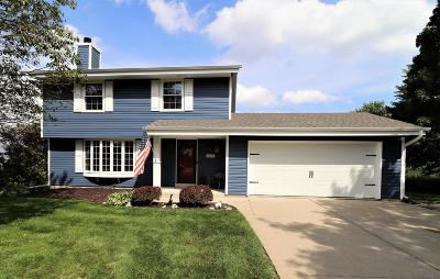 Single Family Home For Sale: 6825 Johnson Ct