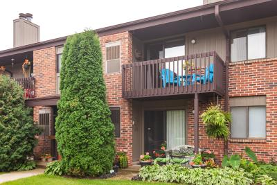 Pewaukee Condo/Townhouse For Sale: 358 Park Hill Dr #H
