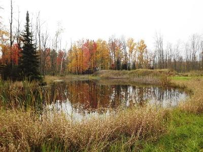 Menominee MI Residential Lots & Land For Sale: $35,000