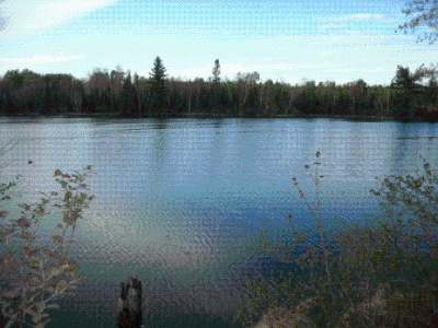 Residential Lots & Land For Sale: On Club Rd W