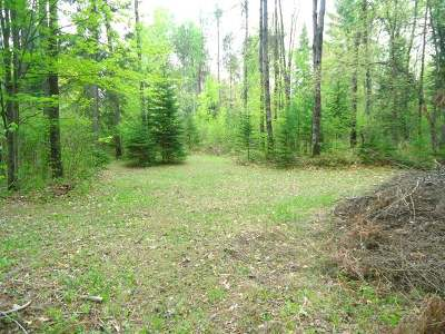 Oneida County, Lincoln County, Price County Residential Lots & Land For Sale: 11315 Patricia Ln