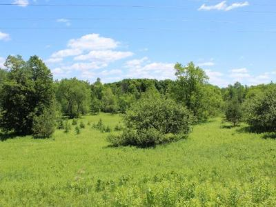 Crandon Residential Lots & Land For Sale: 4.4 Acre Cth S