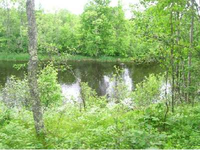 Residential Lots & Land For Sale: On Soo Lake Rd W