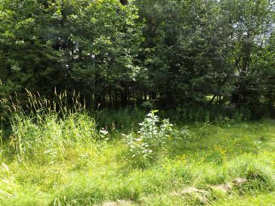 Eagle River WI Residential Lots & Land For Sale: $11,125
