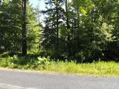 Eagle River Residential Lots & Land For Sale: On Minnesota St
