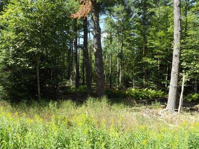 Eagle River WI Residential Lots & Land For Sale: $37,375