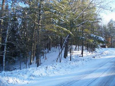 Eagle River Residential Lots & Land For Sale: Near Maple St