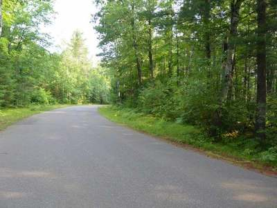 Arbor Vitae WI Residential Lots & Land Sold: $18,500