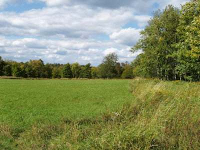 Butternut Residential Lots & Land For Sale: On West Rd