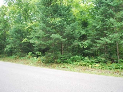 Crandon Residential Lots & Land For Sale: On Potawatomi Tr