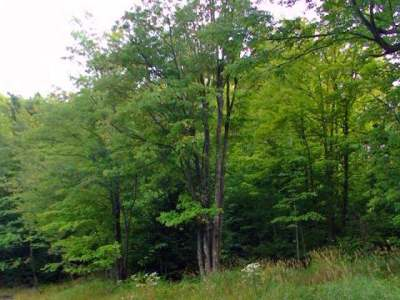 Oneida County, Lincoln County, Price County Residential Lots & Land For Sale: Lot 20 Overlook Dr