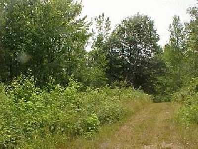 Residential Lots & Land For Sale: 3 Mitchell Ln