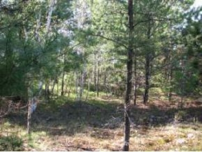 Residential Lots & Land For Sale: 631 Dyer Farm Rd