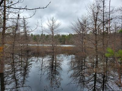 Vilas County Residential Lots & Land For Sale: On Brook Tr #Lot 12