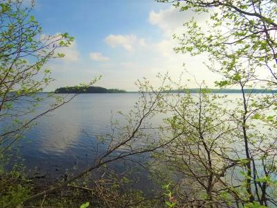 Three Lakes Residential Lots & Land For Sale: On Anders Rd