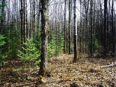 Pickerel WI Residential Lots & Land Sold: $14,000