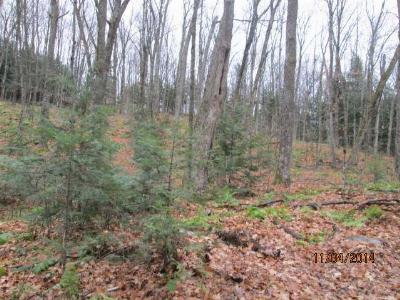 Pickerel WI Residential Lots & Land Sold: $5,000