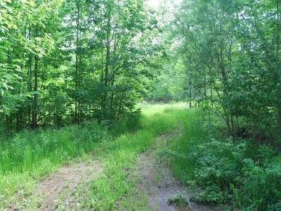 Crandon Residential Lots & Land For Sale: On Crabapple Ln #Lot #3